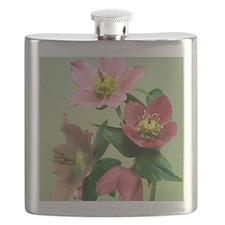 Hellebore flowers Flask