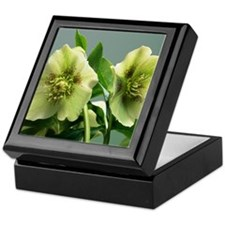 Hellebore flowers Keepsake Box