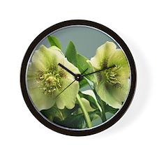 Hellebore flowers Wall Clock