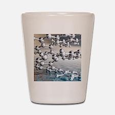 Helicene chiral hydrocarbon Shot Glass