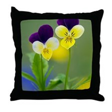 Heartsease (Viola tricolor) Throw Pillow
