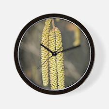 Hazel catkins (Corylus) Wall Clock