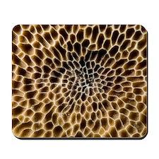Hard coral Mousepad
