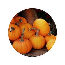 "Harvested pumpkins 3.5"" Button"