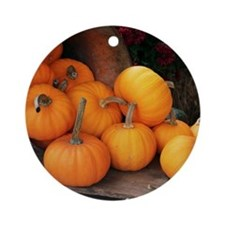 Harvested pumpkins Round Ornament