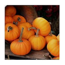 Harvested pumpkins Tile Coaster