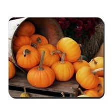Harvested pumpkins Mousepad