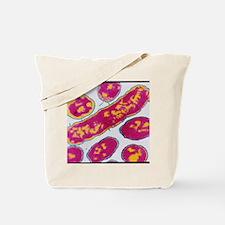Haemophilus influenzae bacteria Tote Bag