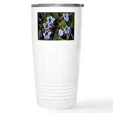 Gromwell (Lithodora zahnii) Travel Mug
