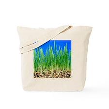 Green shoots Tote Bag