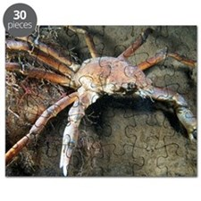 Great spider crab Puzzle