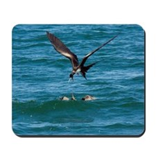 Great frigatebird and blue-footed booby Mousepad