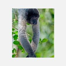 Gray woolly monkey Throw Blanket
