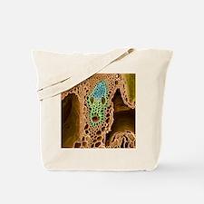 Grass stem, SEM Tote Bag