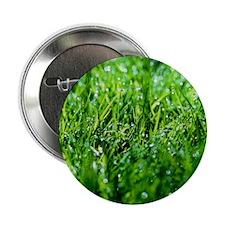 """Grass 2.25"""" Button"""