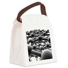 Graphite Canvas Lunch Bag