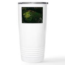 Green algae Travel Coffee Mug