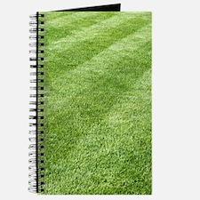 Grass lawn Journal