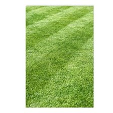 Grass lawn Postcards (Package of 8)