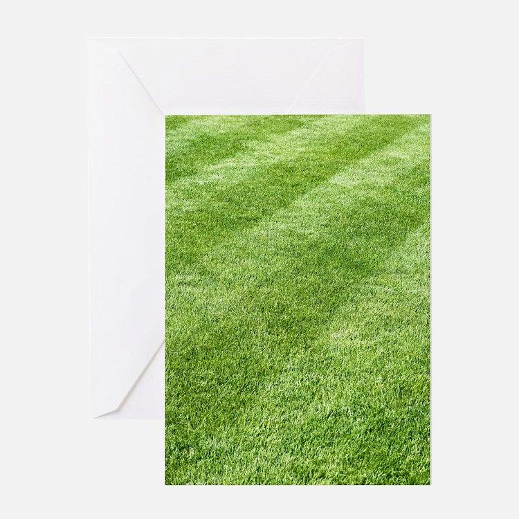 Grass lawn Greeting Card