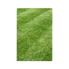 Grass lawn Rectangle Magnet