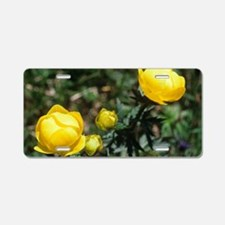 Globe flowers (Trollius eur Aluminum License Plate