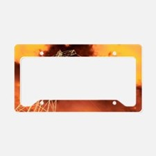 Global warming, conceptual ar License Plate Holder