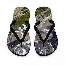 Glacier Noir and the Barre des Ecrins Flip Flops