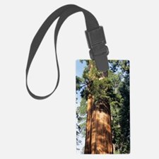 Giant sequoia Luggage Tag