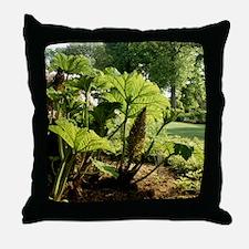 Giant rhubarb (Gunnera manicata) Throw Pillow