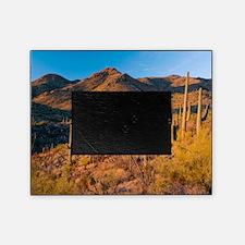 Giant Cactus (Carnegiea gigantea) Picture Frame