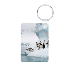 Gentoo penguins jumping in Keychains