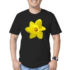 Daffodil T