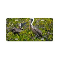 Galapagos brown pelican Aluminum License Plate