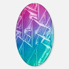 GABA crystals, light micrograph Decal