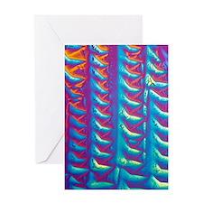 GABA crystals, light micrograph Greeting Card
