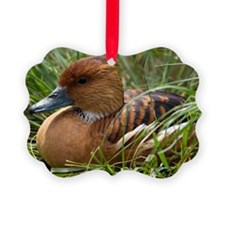 Fulvous whistling duck Ornament