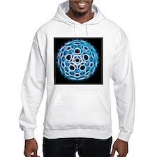 Fullerene molecule, artwork Hoodie