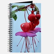 Fuchsia flowers Journal