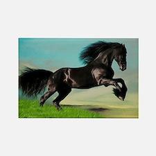 Black Horse Rearing Rectangle Magnet