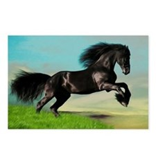Black Horse Rearing Postcards (Package of 8)