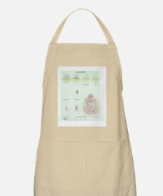Frog life cycle Apron
