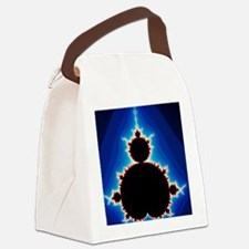 Fractal geometry showing Mandelbr Canvas Lunch Bag