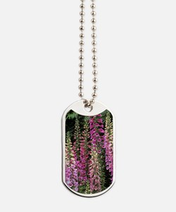 Foxglove hybrids (Digitalis 'Excelsior') Dog Tags
