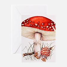 Fly agaric mushrooms Greeting Card
