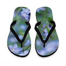 Forget-me-nots (Myosotis sylvatica) Flip Flops