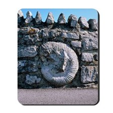 Fossil in a wall Mousepad