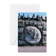 Fossil in a wall Greeting Card