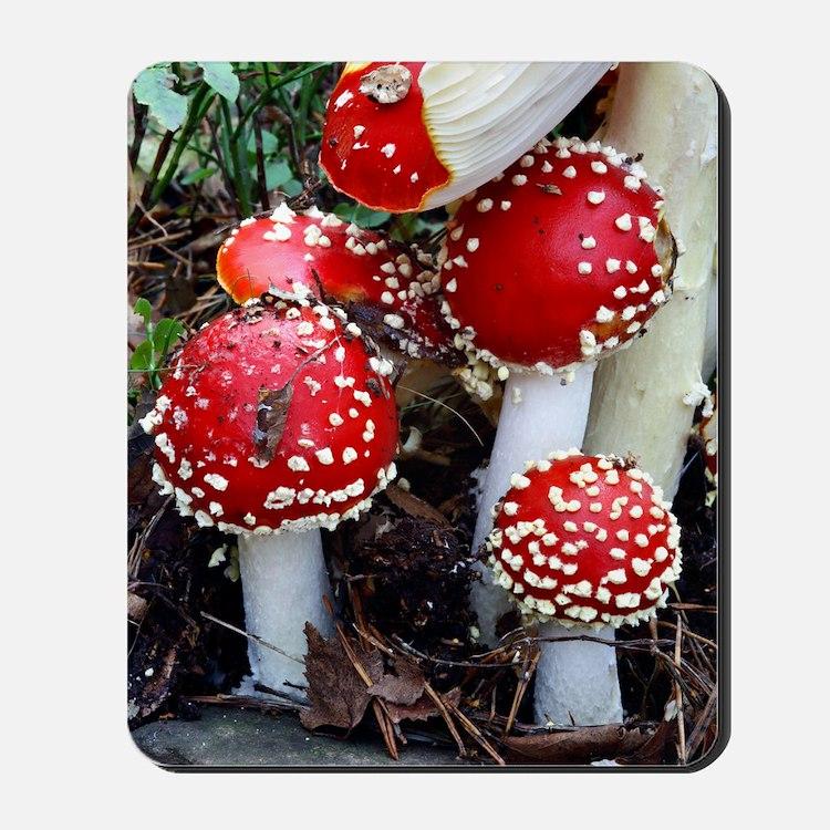 Fly agaric fungi Mousepad