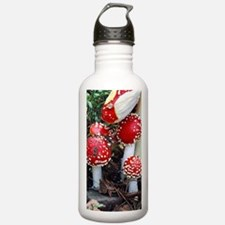 Fly agaric fungi Water Bottle